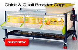 Chick & Quail Brooder Cage