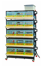 Chick Brooder Housing- 5Tier